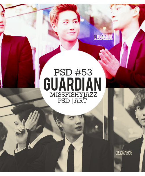 Preview Guardian